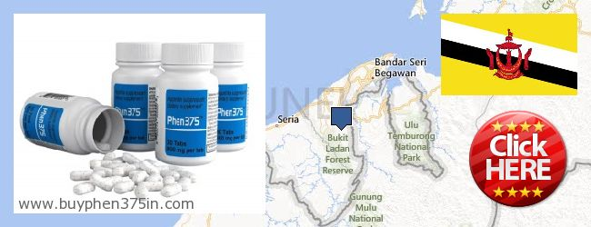 Where to Buy Phen375 online Brunei